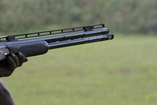 softgun hardball våben
